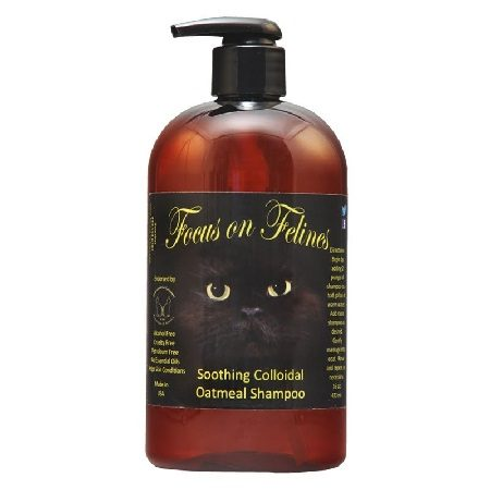 Focus on Felines Oatmeal Shampoo
